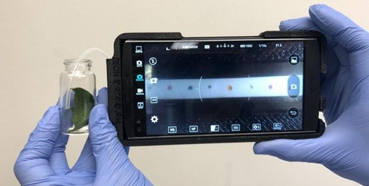گوشی های هوشمند، بیماری های گیاهان را تشخیص می دهند